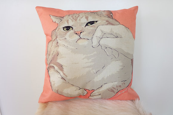 Funny Cat Pillow Case