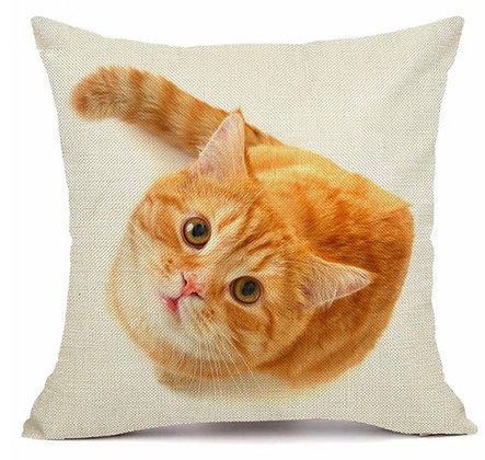 Orange Tabby Cat Cushion Cover
