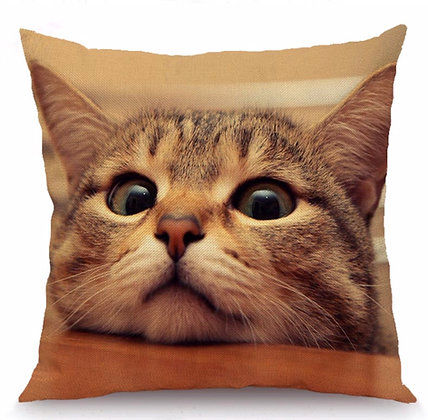 Tabby Kitty Cushion Cover
