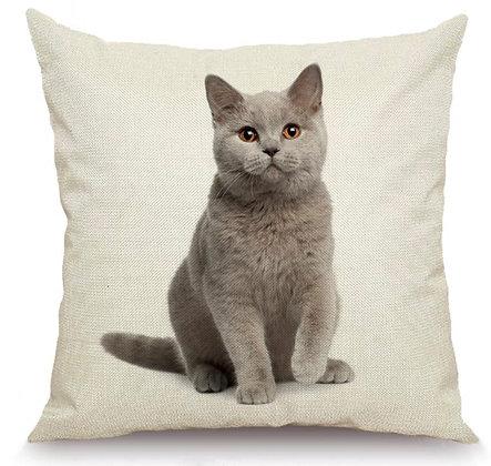 British Shorthair Cushion Cover 2