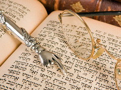 Torah Insights