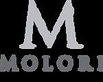 MOLORI_DESIGN.png