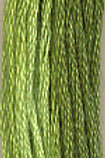 The Gentle Art Sample Threads Spring Grass