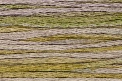 Weeks Dye Works 6 Strand Floss - Thistle