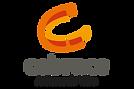 logo CEBRACE.png