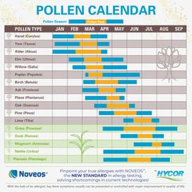 Tree Pollen and Allergic Rhinitis