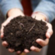 compost-101490925_4.jpg