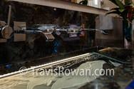 HalePauHanaD1-16.jpg