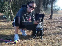 Dog training @ the park
