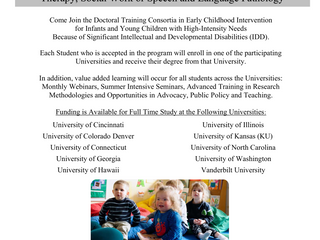 Doctoral Training Consortia in Early Childhood Intervention for Infants and Young Children with High