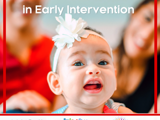 NEW Service Coordination in Early Intervention Joint Position Statement