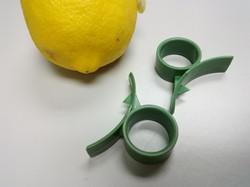 Citron Cutter