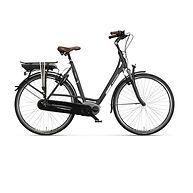 1406-E-bike-Batavus-Milano.jpg