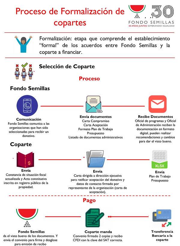 5.Infografía_Interna_Formalización_c