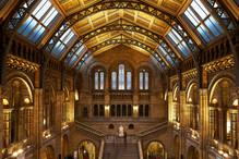 Natural History Musuem London.jpg