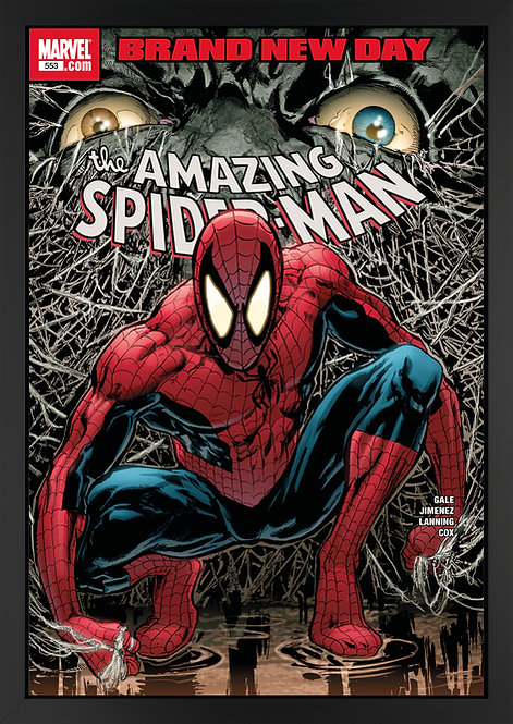 The Amazing Spider-Man #553 - Brand New DayA limited edition boxed canvas, hand-