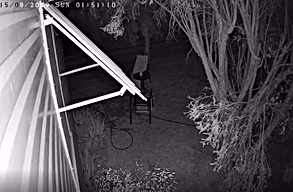 09. Night time view from a Security Camera system with infra red - motion detection - &  selective motion blocking (trees - shrubs moving in breeze - wind)