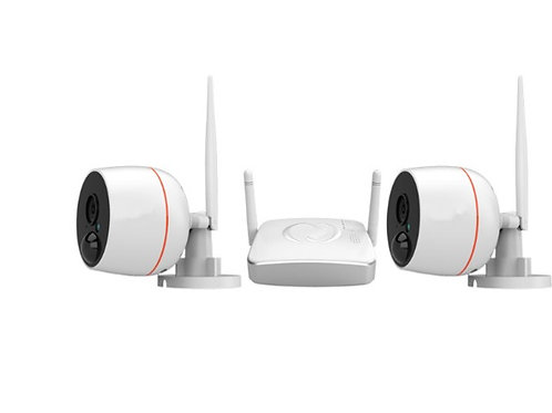 2 x 1080P Wi-Fi cameras + mini NVR