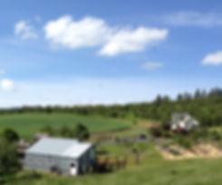 Muddy Springs Farm Moscow Idaho
