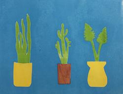 Three plants, 2017