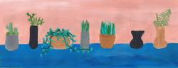 Seven vases, six plants, 2017