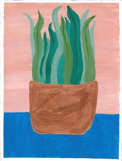 Plant, 2017