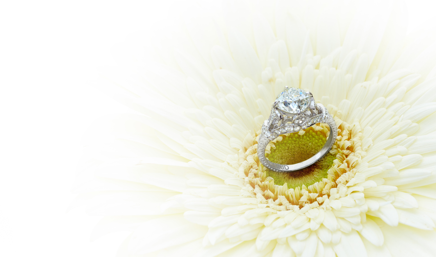 Dallas Jewelry Photographer