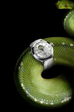 Dallas Jewelry Photographer