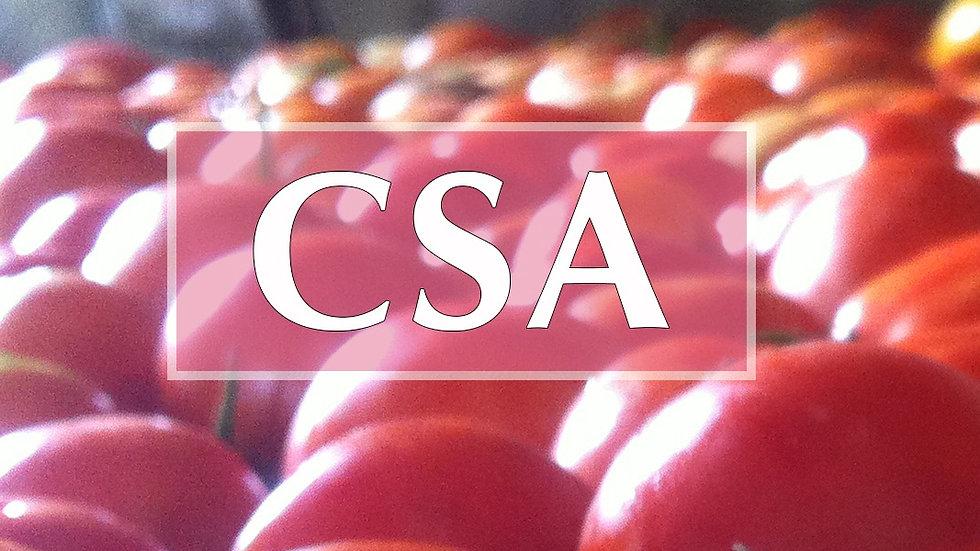 No Committment CSA