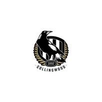 TAV logo Collingwood.jpg