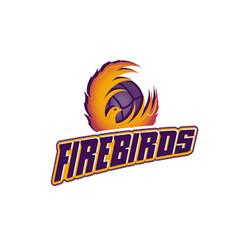 TAV logo Firebirds.jpg