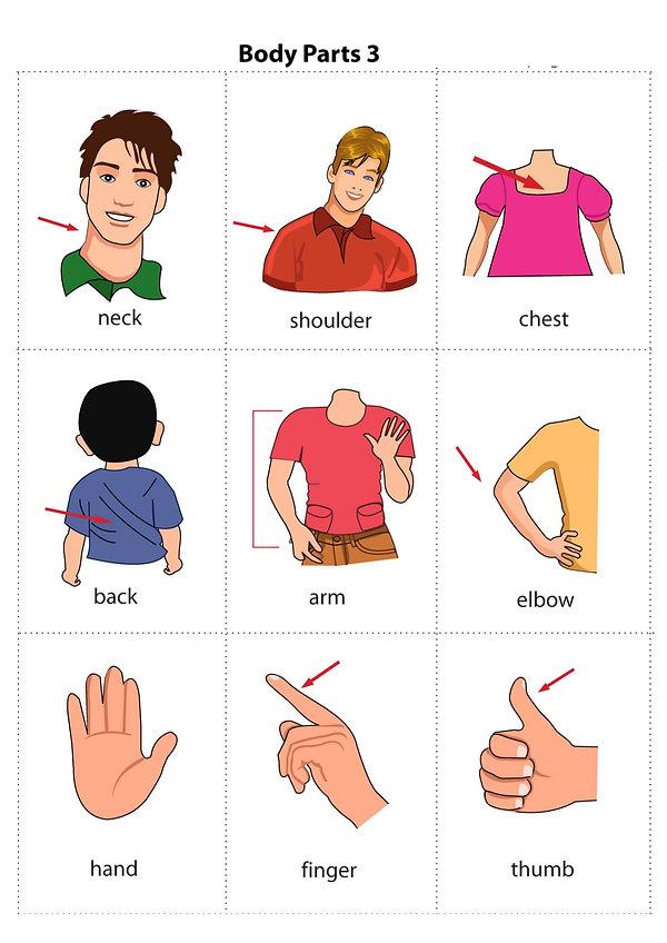 Vocabulary_Flashcards_body3.jpg