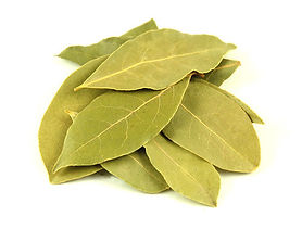 bay-leaves-500x500.jpg