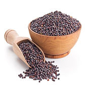 brown-mustard-seeds-500x500.jpg