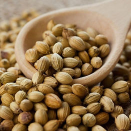 dried-coriander-seeds-1568968848-5088421