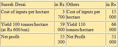 No-till sugar cane cultivation with alternate row irrigation, Belgaum, Karnataka, India