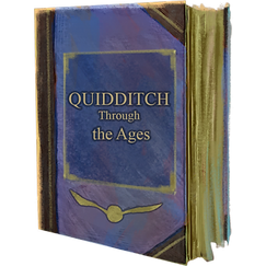 Book Quidditch Through the Ages-foundabl
