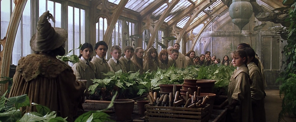 Professor_Sprout_greenhouse_1.png