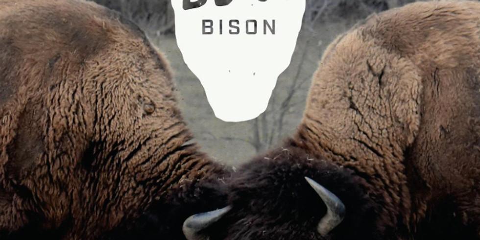 Bare Bison Winter Wine Night