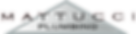 Mattucci logo.png