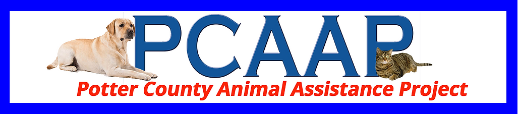 PCAAP-Banner.png