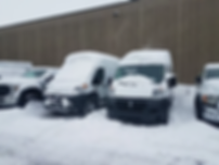 Snowy Promasters.png