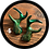 Thumbnail: Ethereal Antler Clips