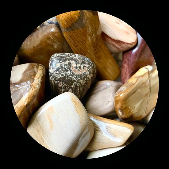 A Pile Of Petrified Wood Stones