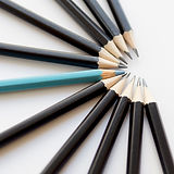 group-of-black-pencils-and-one-blue-penc