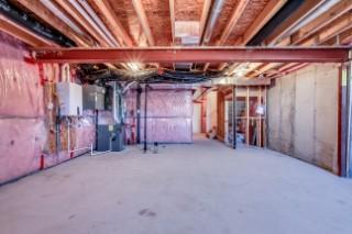 Shrie basement