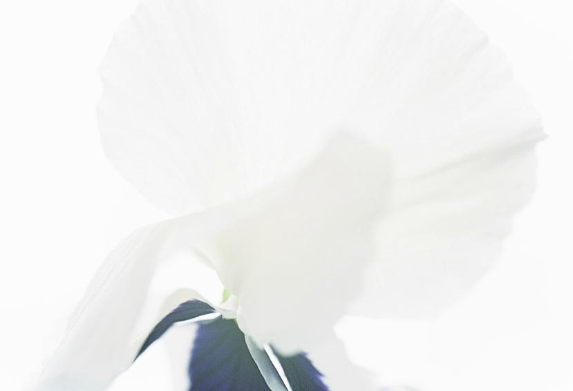 Capture d'écran 2015-01-20 à 22.16.03.