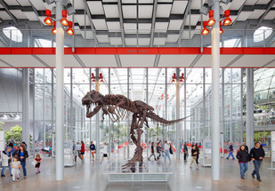 Free Neighborhood Weekend at The California Academy of Sciences
