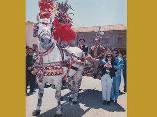Sicily: A Heart's Journey