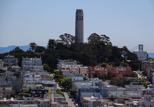 The History of the Telegraph Hill Dwellers